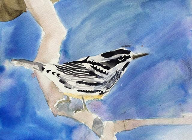 February Bird
