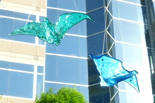 Bird flying inside Gallery B, May 2013