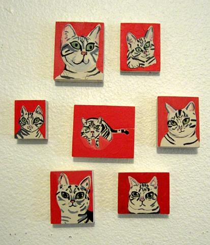 Miniature Tabby Portraits