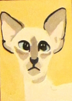 Nine Lives Siamese (1 of 9)