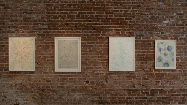 installation view, A Broken Line