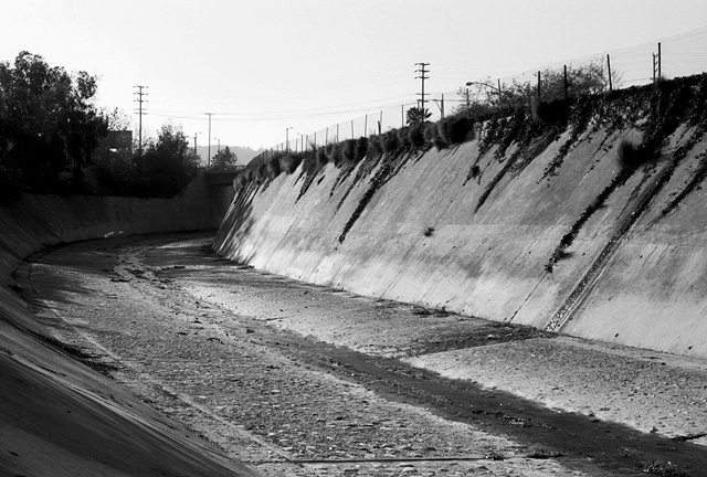 LA River, Vines, Near Highland Park, 1997