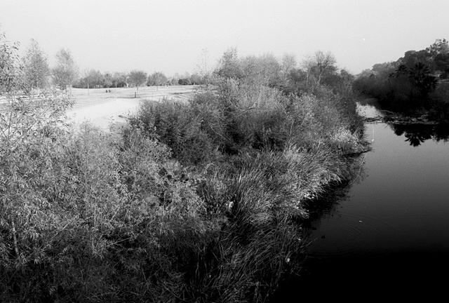 LA River, Sepulveda Dam Recreation Area, San Fernando Valley, #1, 1998