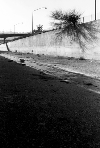 LA River, Hollywood Freeway, Streetlights & Bush, 1997