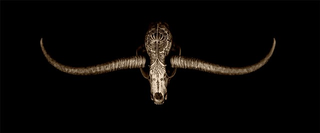 I Sing When I Sleep (Jason Borders Skull, Springbok Horns)