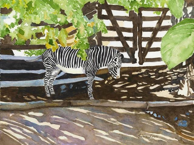 Patterns at the Cincinnati Zoo