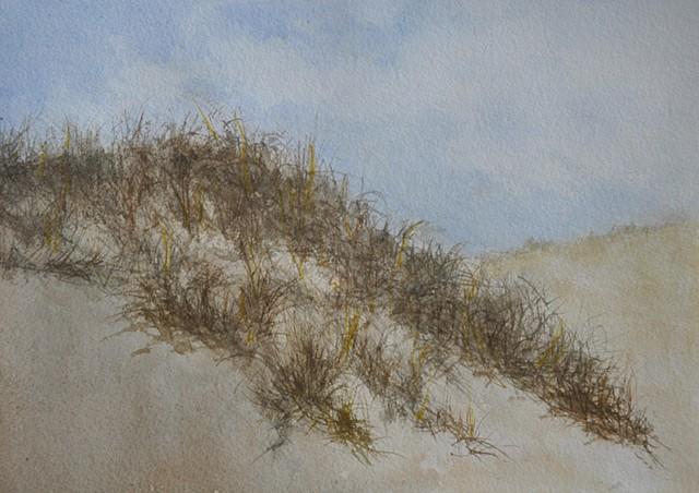 Sand Dune #1