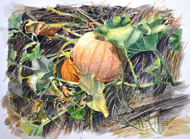 Ontario October