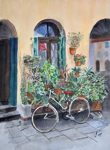 Flower Shop in Sienna