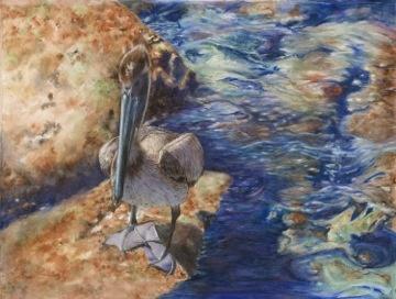 Pigeon-Toed Pelican