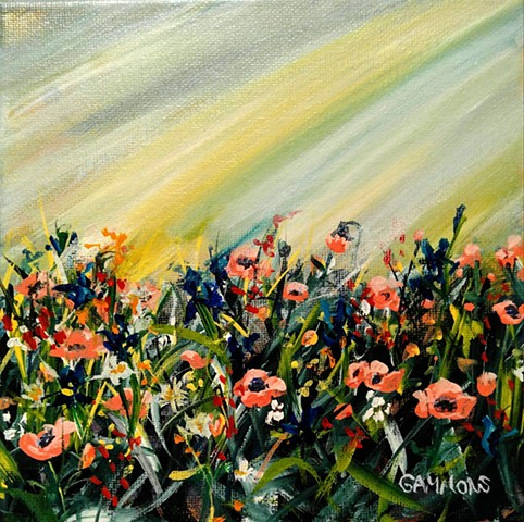 pink poppies wildflowers sunshine #lauragammonsstudios laura gammons @lauragammons #camplaura #lauragammons