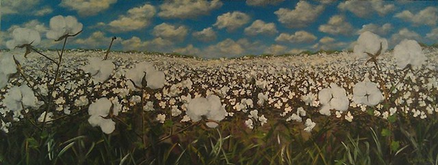 cotton field fall heritage crop