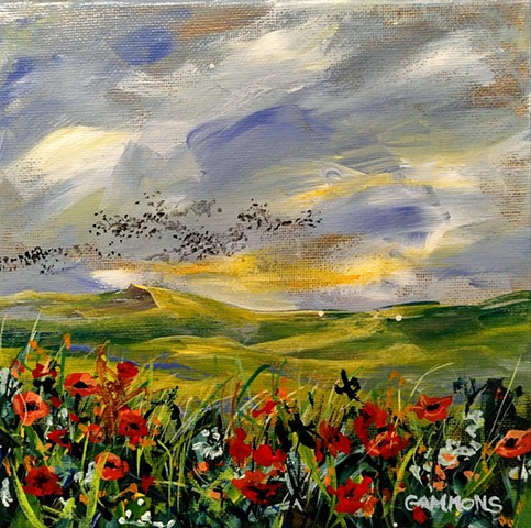 poppies blackbirds grackles robins valley wildflowers #lauragammonsstudios laura gammons @lauragammons #camplaura #lauragammons