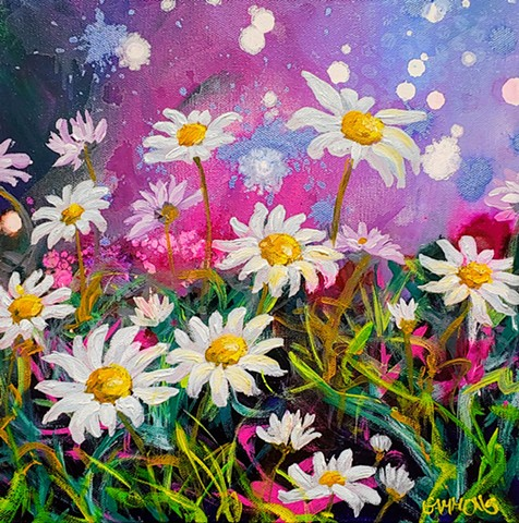 daisy, field, pink, purple, blush, flowers