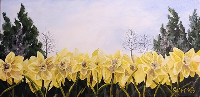 Jonquil, yellow, cold, spring, winter, daffodil