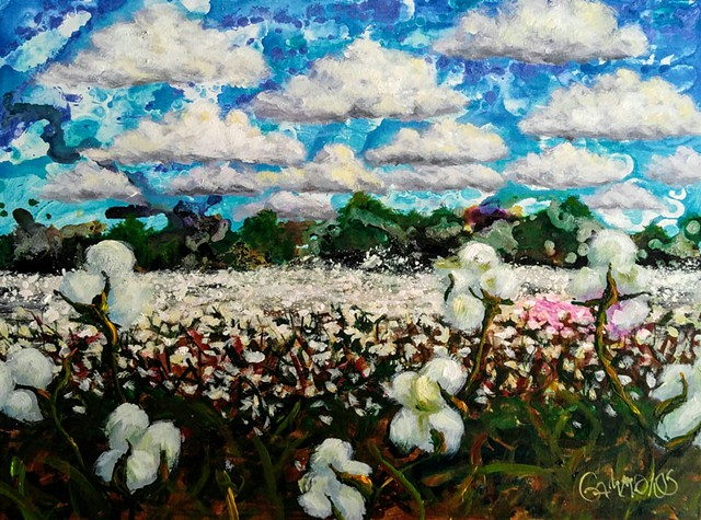 Cotton, sky, clouds, field, harvest, southern