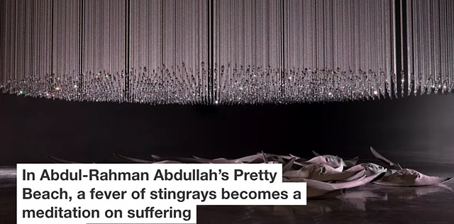 The Conversation - In Abdul-Rahman Abdullah's Pretty Beach, a fever of stingrays becomes a meditation on suffering