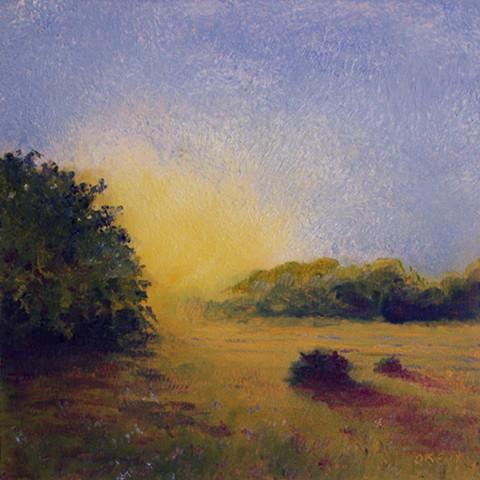 Newbury Massachusetts cow pasture pastoral sunset painting memory study oil painting oil on panel Dan Fionte