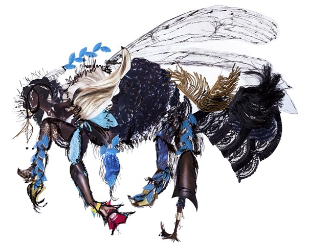 endangered species, bee, collage, drawing, environment, biodiversity empathy