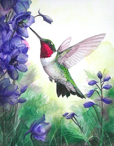 Ruby-Throated Hummingbird with Black Knight Delphinium
