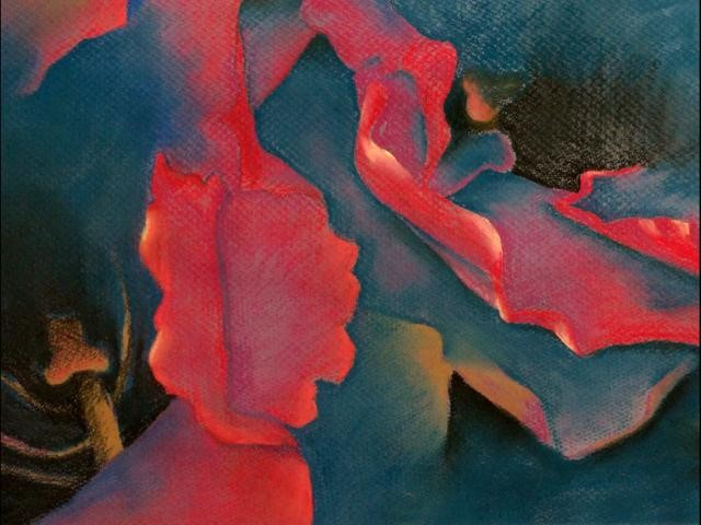 Close-up of two red gloxinias, predominant colors are red and blue, with some ocher and white.  Pastels on dark blue Canson Paper.