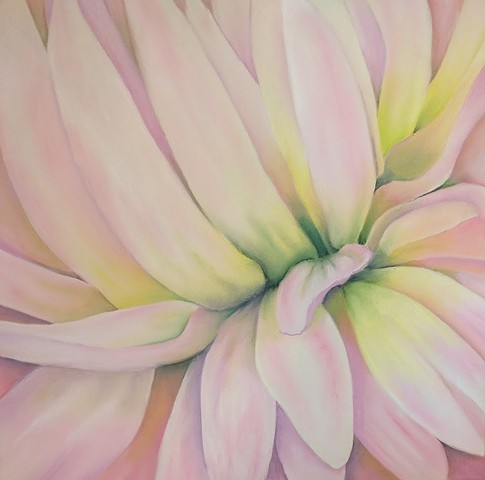 Close-up of a pink dahlia, focusing on the convergence of petals at the stem