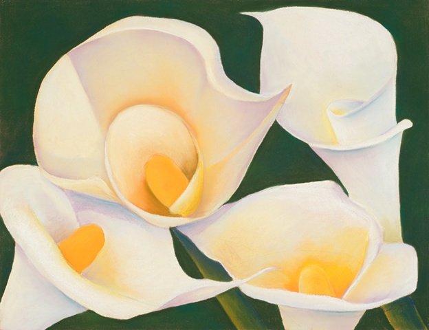 Floral Pastel  Pastel of four white calla lilies on white Canson paper.