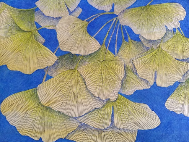 Ink drawing of ginkgo leaves, colored pencil shading and background