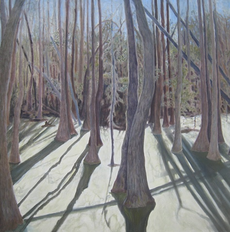 Refections of trees on silver surface of algea in waters of Magnolia Plantain 's swamp, N.C.