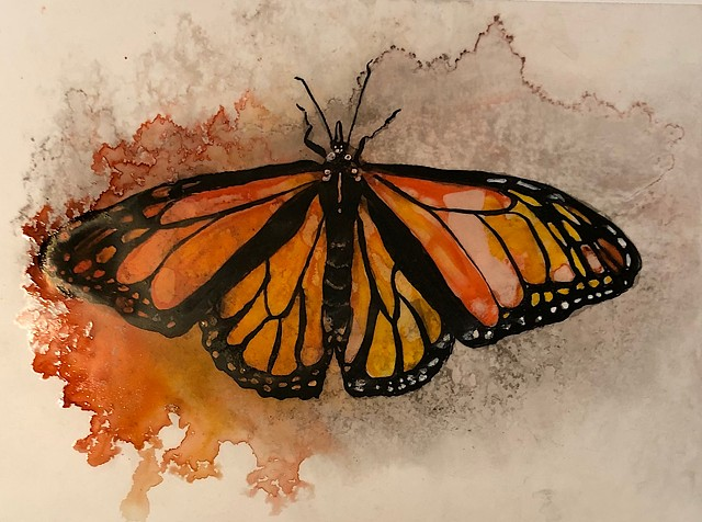 Monarch butterfly, Yupo paper, watercolor ink painting