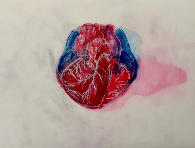 Human heart, Yupo, ink, drawing