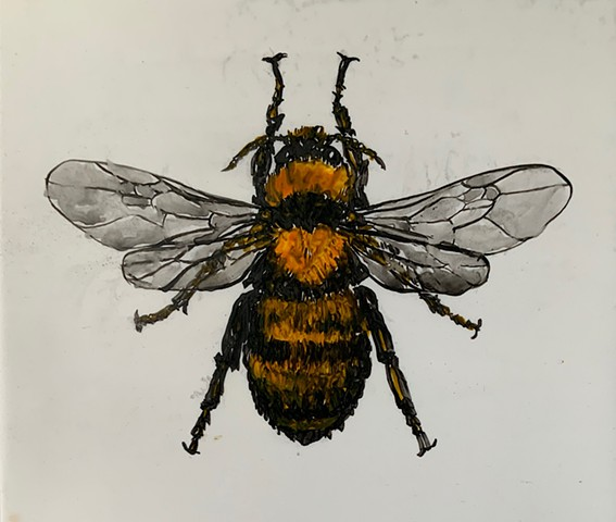 honey bee, painting, Yupo
