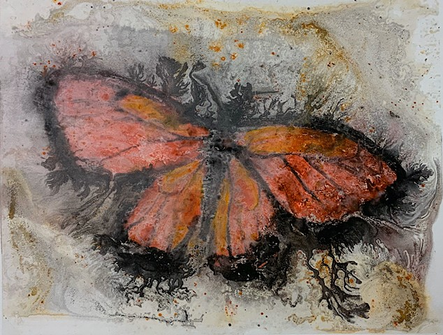 monarch butterfly, watercolor ink transfer