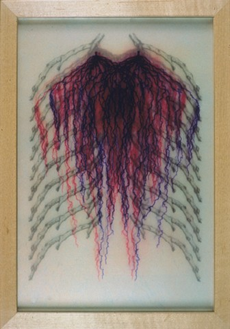 Laurie Rousseau, botanical, structures, anatomy, ribs, veins