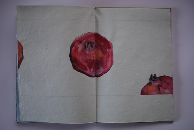 garden book - detail - pomegranate