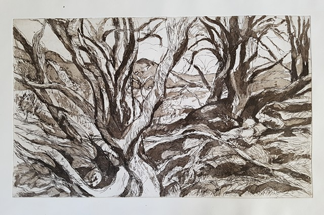 Scottish Landscapes Etchings 2017 - 2019