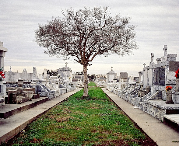 Cemetery, New Orleans, Louisiana