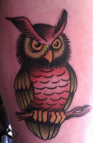 Peter McLeod Tattoo Traditional Owl on branch tattoo