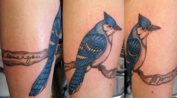 Peter McLeod Tattoo Blue Jay tattoo