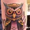 Traditional Owl