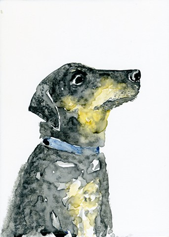 Watercolor of dog looking off