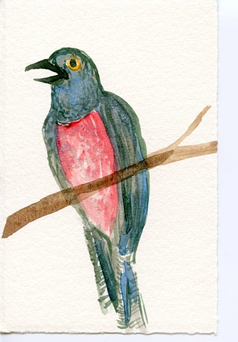 hand watercolored bird card
