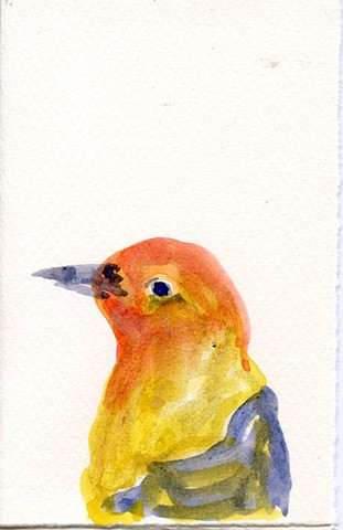 Bird Portrait