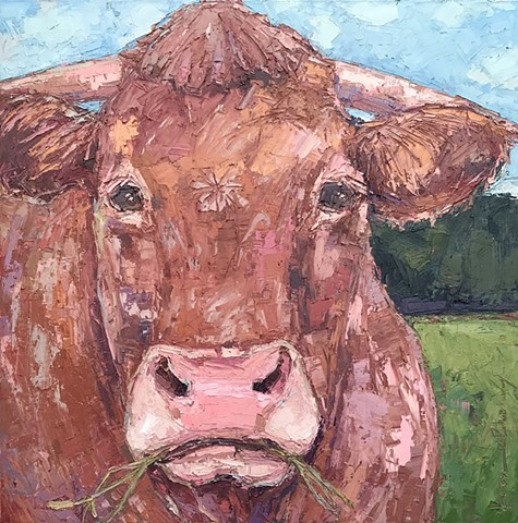 Brown Bull Painting, cow art, palette knife painting of a cow bull, oil & cold wax