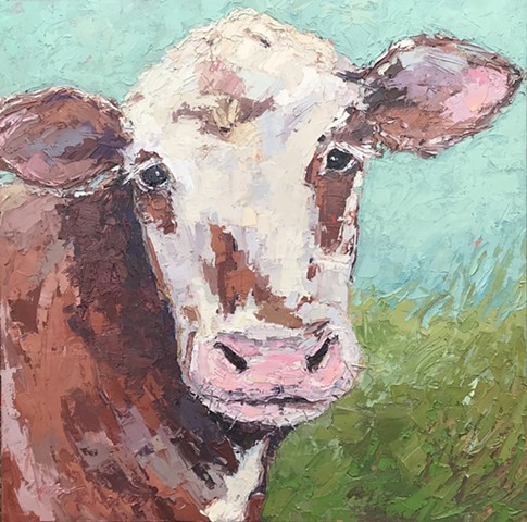 Brown and white cow with grass and blue sky