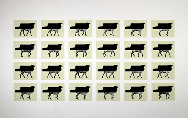 After Muybridge #1