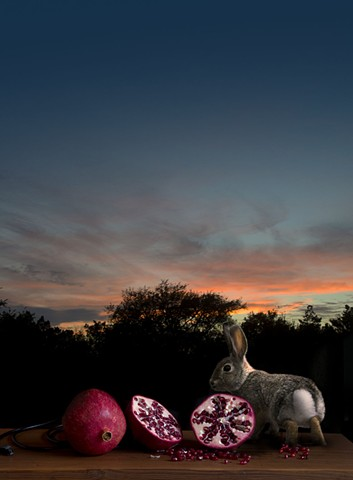Forest Fertility God, No.4393
