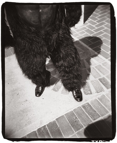 Holga photography of a man in a gorilla suit