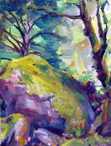 Carver Cliff Boulders