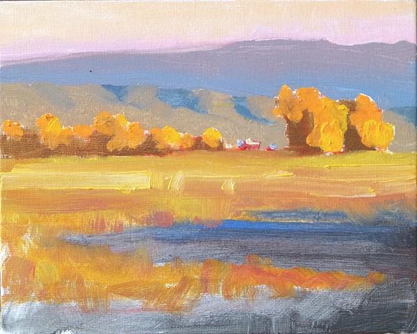 Fall pasture, El Rito NM